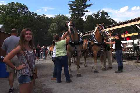 The Saratoga County Fair 2014